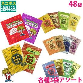 ネコポス送料無料 夢フル シャカシャカポップちゃん フレーバー 16種×各3袋(48袋) 味付け ポップコーン