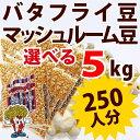 新発売 ポップコーン豆バタフライタイプ 5kg (500g×10袋)(約250人分)