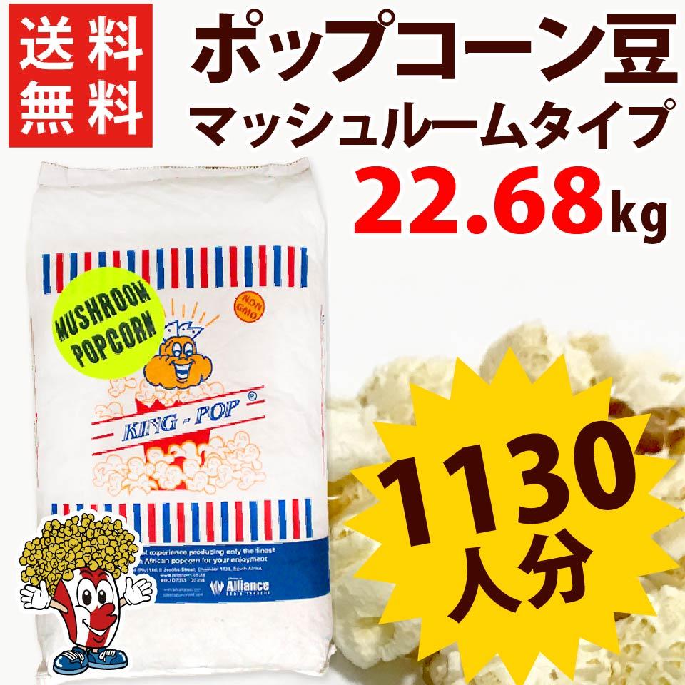 送料無料 ポップコーン豆マッシュルームタイプ 22.68kg ( 約1130人分 ) KING