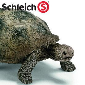 (インテリア・雑貨)schleich シュライヒ 14601 大カメ【水槽/熱帯魚/観賞魚/飼育】【生体】【通販/販売】【アクアリウム/あくありうむ】
