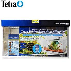 テトラ ホワイトアクアリウム スリム 520【水槽/熱帯魚/観賞魚/飼育/セット水槽/オブジェ】【生体】【通販/販売】【アクアリウム/あくありうむ】
