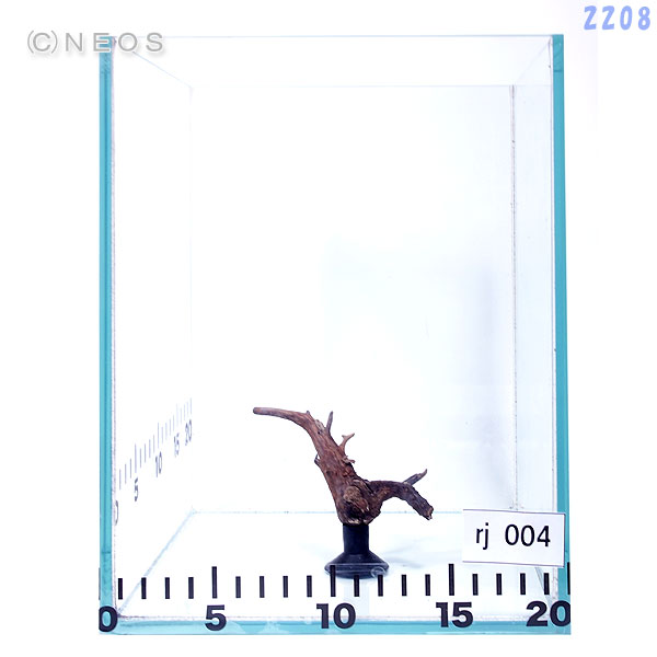 【流木】一点物  レイアウト枝流木 吸盤付き rj004 画像の商品をお届け 【水槽/熱帯魚/観賞魚/飼育/セット水槽/オブジェ】【生体】【通販/販売】【アクアリウム】