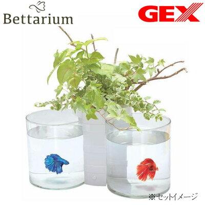 GEXベタリウムツインポット
