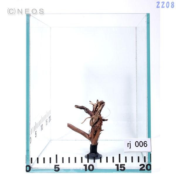 【流木】一点物  レイアウト枝流木 吸盤付き rj006 画像の商品をお届け 【水槽/熱帯魚/観賞魚/飼育/セット水槽/オブジェ】【生体】【通販/販売】【アクアリウム】