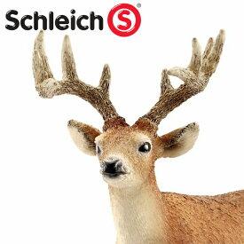 (インテリア・雑貨)schleich シュライヒ 14709 オジロジカ(オス)【水槽/熱帯魚/観賞魚/飼育】【生体】【通販/販売】【アクアリウム/あくありうむ】