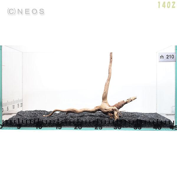 【流木】一点物 枝状 ダークウッド M rh210 画像の商品をお届け 【水槽/熱帯魚/観賞魚/飼育/セット水槽/オブジェ】【生体】【通販/販売】【アクアリウム】