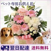 【あす楽】ペットへ贈るお供えアレン...