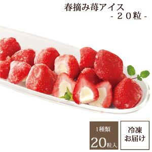 春摘み苺アイス【20粒】