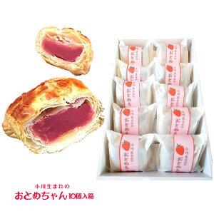 『日進堂菓子店』小川生まれのおとめちゃん 10個入箱 (栃木県産品 那珂川町)