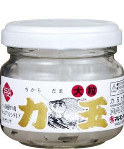 【マルキユー】力玉大粒(ちからだまおおつぶ) 冬季限定品