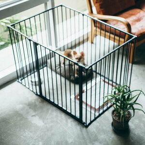 スカンジナビアンペットケージXL 6枚セットスチール製 Scandinavian Pet Design小型・中型犬用サークル 北欧 ドッグサークル ドッグケージ ペットケージ ペットサークル おしゃれ 犬 ケ