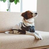 【犬服】【ドッグウェア】モスキートリパレントフーディLL/3L