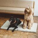 【犬/ベッド】小型犬用のシンプルベッド