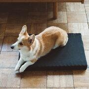 コットンリネンデュアルウェーブベッドMサイズ犬