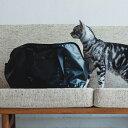 猫のキャリーバッグネコ用 キャリーバック スクエアトート ターポリン Mサイズ carry bag free stitch