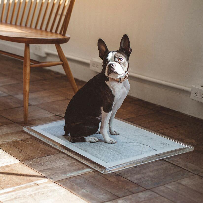 オリジナル アクリル トイレ トレイ M ワイド 犬