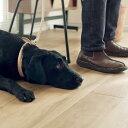 【犬 リード】オリジナル ヌメ ウーブン リング リード LL サイズ 大型犬 大型犬/リード/レザー/革/皮/人気/【大型犬…