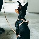 【犬 ハーネス 革】小型犬用 オリジナルヌメリング ワンタッチハーネス 25