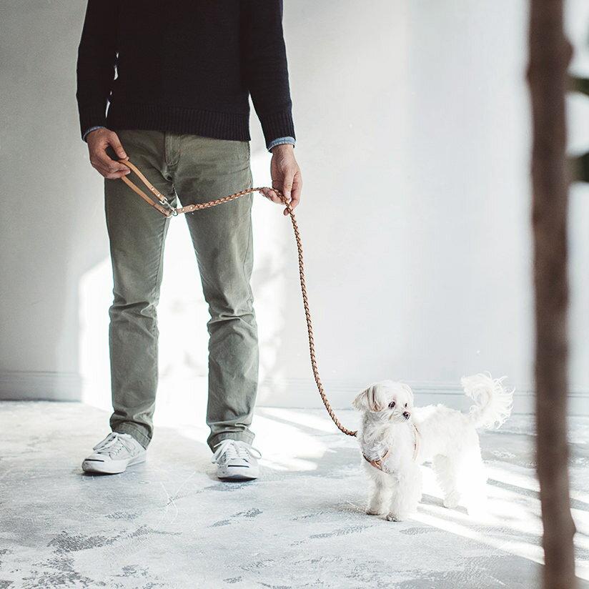 【犬 リード 革】オリジナル ヌメウーブン リング リード S サイズおしゃれ シンプル 日本製 皮 ヌメ革 かわいい ペット 小型犬