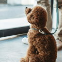 【犬 リード】フレッシュストライプリード リ−ド S