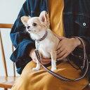 【犬 リード】フレッシュ ストライプ リード S サイズ 小型犬【犬 リード】【ファッションリード】【散歩】【テープ …