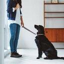 犬 リード 大型犬 フレッシュストライプ ショートリード