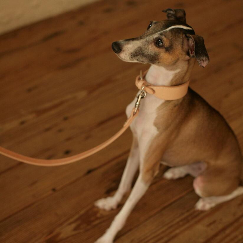 【犬 リード】オリジナル ヌメ リング リード M サイズ 犬用犬リード 犬 リード 小型犬 中型犬 革 皮 革製 レザー おしゃれ 犬のリード