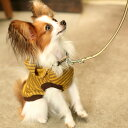 【犬 首輪 革】小型犬用 サニーストライプカラー SS くびわ 皮