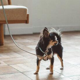 犬 リード 革 小型犬用 サニーストライプリード SS 皮 リ−ド