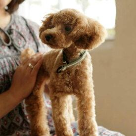 【犬 ハーフチョーク】リフレクティブ ハーフチョーク 17 小型犬【犬用ハーフチョーク】ハーフチョーク 小型犬 しつけ ナイロン カラー 犬の首輪 ハーフ トイプードル チワワ ペット用品