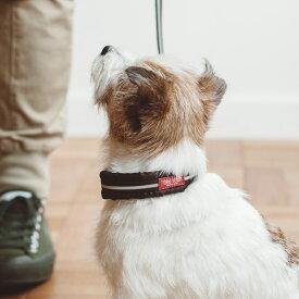【小型犬 ハーフチョーク】リフレクティブ ハーフチョーク 25 犬小型犬用ハーフチョーク ソフト ハーフチョーク 首輪 革