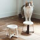 pecolo Food Stand S(Tall) 陶器浅型 フードボウルスタンド 猫 フードボウル