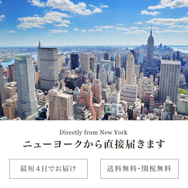 ニューヨークデザインネックレス