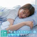 極冷え 冷感 枕パッド 【2枚セット】 43x63サイズ 送料無料 まくらパッド 抗菌防臭 防ダニ マクラパッド ランキングお取り寄せ