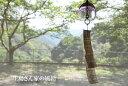 「風鈴 紫」 風鈴・ガラス風鈴・風鈴市・硝子の風鈴・江戸切子風鈴・江戸風鈴などの通販・販売