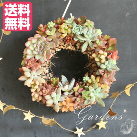 多肉植物 寄せ植え おしゃれ 多肉リース 多肉植物 苗 リース 飾り 装飾 クリスマス インドアグリーン プレゼント 贈り物 【送料無料】多肉植物 寄せ植え 鉢