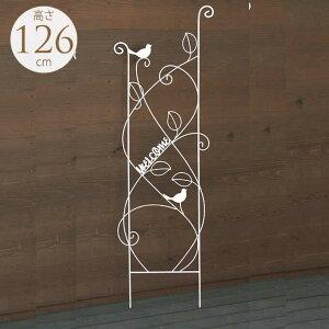 アイアン トレリス フェンス 小鳥遊ぶ 設置高さ約110cm ガーデニング アイアンフェンス おしゃれ 飾り つるバラ ガーデン雑貨 簡単 設置 庭 装飾