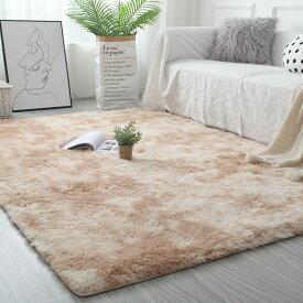8色ラグ 洗える 畳 柔らかくてすべすべしている ラグマット 300×400cm カーペット リビング グラデーション色 絨毯 北欧 長い毛羽おしゃれ じゅうたん かわいい シャギーラグ 洗えるカーペット 洗濯 長方形