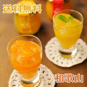 伊藤農園 ピュアフルーツ寒天ジュレ 和歌山県産 6個セット(みかん・きよみ・はっさく×各2個)