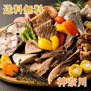 三崎 漁師のまぐろBBQセット 神奈川県産 アゴ肉・エンガワ・カマ肉ステーキ・尾身ステーキ・骨付きカルビ