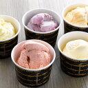 [お中元] [御中元] [帰省] [手土産] [東京土産]【銀座プレミアムアイス】銀座千疋屋が厳選したフルーツで作った濃厚な味わいのアイスクリーム【パティスリー... ランキングお取り寄せ