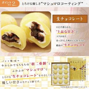 黄金のぉまい玉チョコバナナ福井銘菓お歳暮お土産スイーツギフト福井弁お菓子