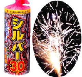 【噴水花火】白銀の癒しの世界へあなたを誘う♪ シルバー30(長噴出30)