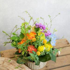 フラワー アレンジメント 花 かわいい 誕生日 お祝 開店祝い プレゼント バラ、チューリップ、スカビオサ アレンジ 送料無料