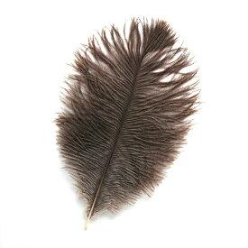 オーストリッチ小 15-25cm (ブラウン) この羽根はディスプレイ、アクセサリー、ヘットドレス等に使用されてます。