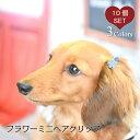 【犬 ヘアアクセサリー】 フラワー ミニ ヘアクリップ ヘアピン 10個セット