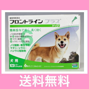 ◎◎【メール便・送料無料】犬用 フロントラインプラス M(10〜20kg未満) 6本入※パッケージリニューアルに伴い、お手元に届く商品が掲載写真と異なる場合がございます。
