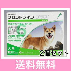 ◎◎【メール便・送料無料】犬用 フロントラインプラス M(10〜20kg未満)6本入 [2個セット]※新パッケージでのお届けとなります。