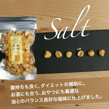 ハッピーナッツカンパニージャイアントコーン塩味100g