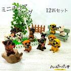 ミニチュアドッグ犬12匹セット置物マスコットAO-019犬の置き物ディスプレイあす楽宅配便のみ